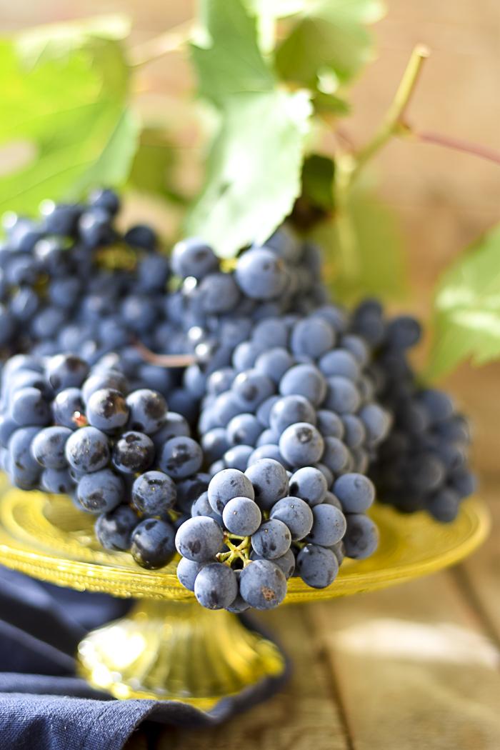 uva nera, panella con l'uva, ricette uva